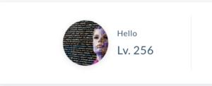 256レベル